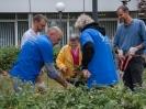 Freiwilligentag_2014_016